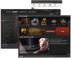 Screenshot of Rome II on Linux
